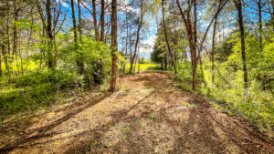 New 2 mile Hiking Trails - Bring your golf cart!